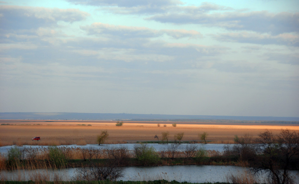 Karawaika Cottage, Dniester Delta National Park, Bed & Birding Ukraine