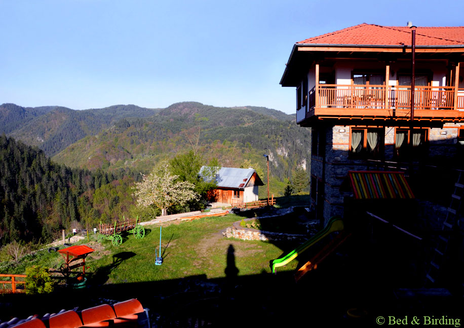 Chalet-style Hotel Mursal, Yagodina village, West Rhodope Mountains, Accommodation for Birders